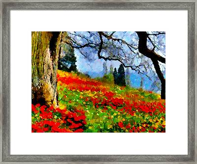 Poppies On A Hill Framed Print by Georgiana Romanovna