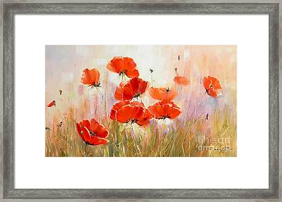 Poppies On Field Framed Print by Petrica Sincu