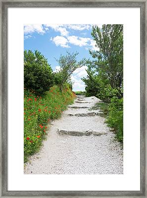 Poppies On The Grounds Of Les Baux Framed Print