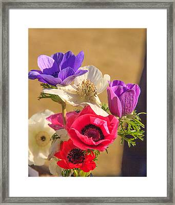 Framed Print featuring the photograph Poppies by Patricia Schaefer