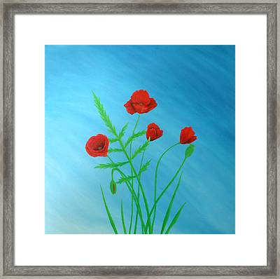 Poppies Framed Print by Sven Fischer