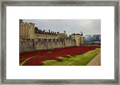 Poppies Tower Of London Framed Print
