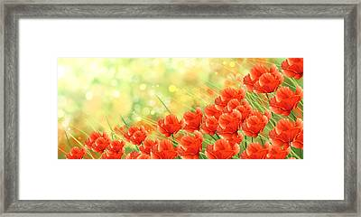 Poppies Framed Print by Veronica Minozzi