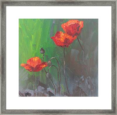 Poppies3 Framed Print by Susan Richardson