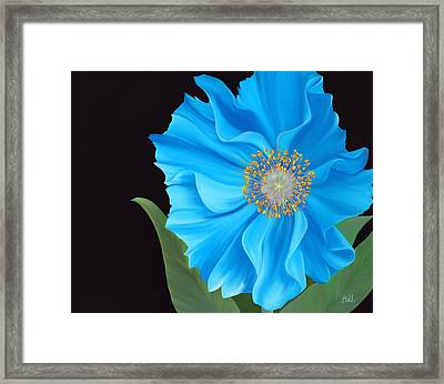 Poppy 2 Framed Print by Laura Bell