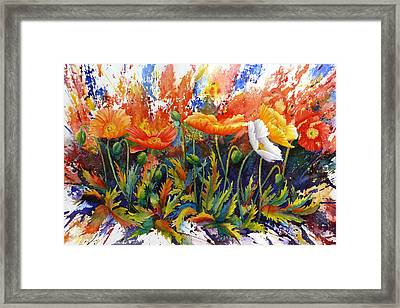 Poppy Blast Framed Print