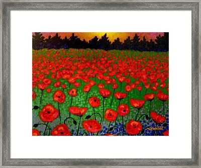 Poppy Carpet  Framed Print by John  Nolan
