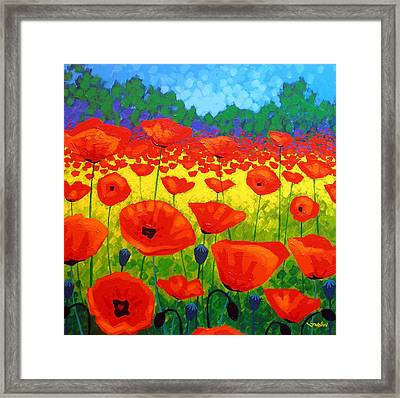 Poppy Field V Framed Print