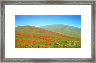 Poppy Fields Framed Print