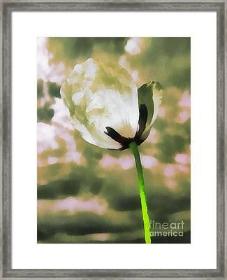Poppy Flower In The Sky  Framed Print by Odon Czintos