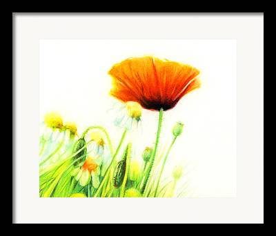 Gardenscapes Drawings Framed Prints