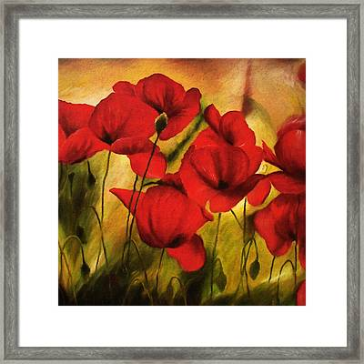 Poppy Flowers At Dusk Framed Print