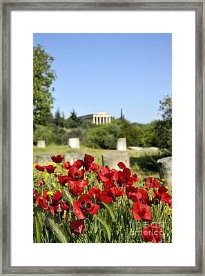 Poppy Flowers In Ancient Market Framed Print by George Atsametakis