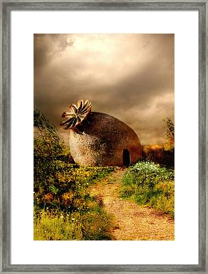 Poppy House In A Sunny Day Framed Print