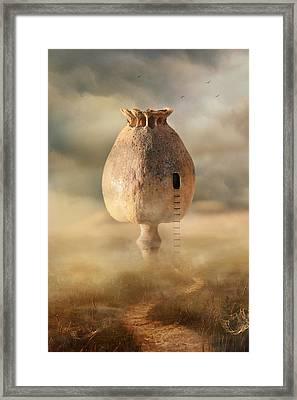 Poppy House Framed Print by Jaroslaw Blaminsky