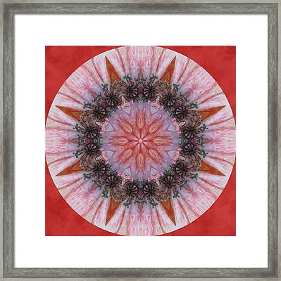 Poppy In My Garden In A Circle Framed Print