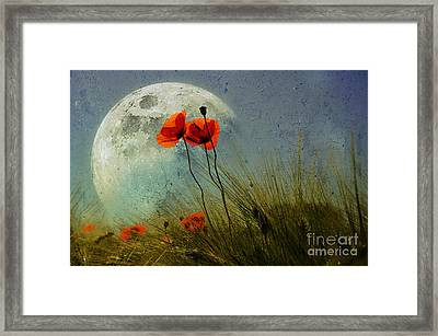 Poppy In The Moon Framed Print by manhART