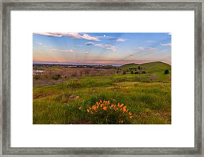 Poppy Moonrise Framed Print by Marc Crumpler