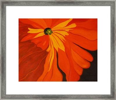 Poppy Framed Print by Nancy Merkle