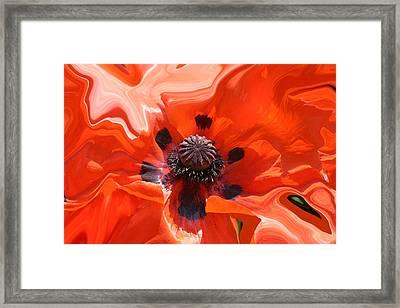 Poppy Nest Framed Print
