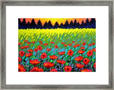 Poppy Scape Framed Print by John  Nolan