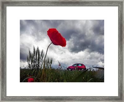 Poppy With Car Framed Print