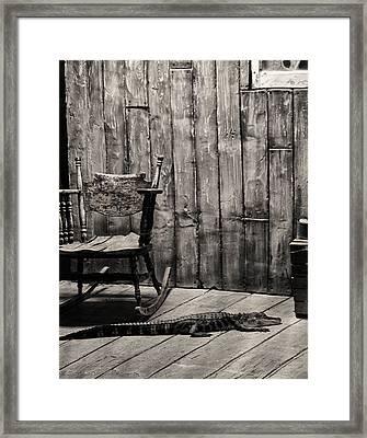 Porch Alligator Framed Print