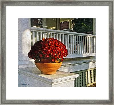 Porch Beauty Framed Print by Brian Wallace