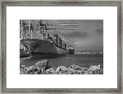 Port Of Long Beach Framed Print