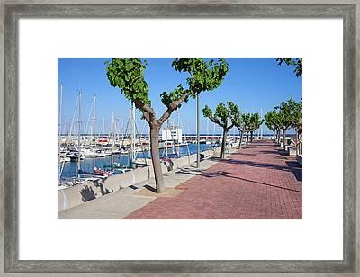 Port Olimpic Promenade In Barcelona Framed Print