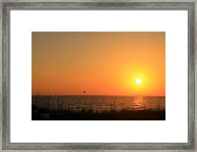 Port St. Joe Sunset Framed Print