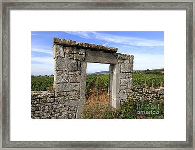 Portal Of Vineyard In Burgundy Near Beaune. Cote D'or. France. Europe Framed Print by Bernard Jaubert