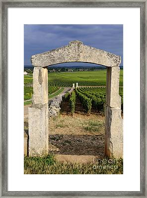 Portal  Of Vineyard.burgundy. France Framed Print by Bernard Jaubert