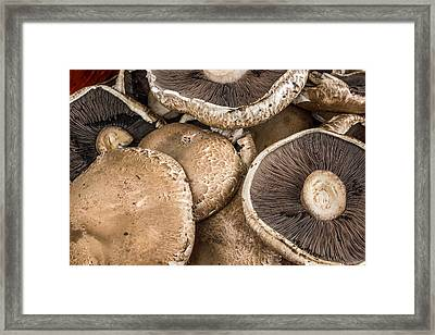 Portobello Mushrooms Framed Print