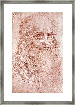Portrait Of A Bearded Man Framed Print by Leonardo da Vinci