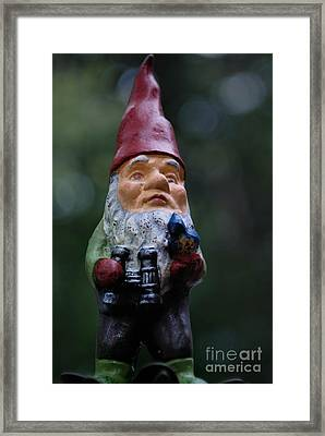 Portrait Of A Garden Gnome Framed Print by Amy Cicconi
