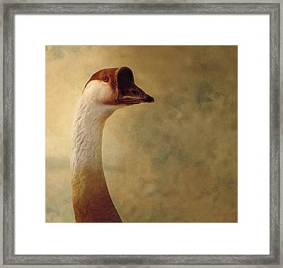 Portrait Of A Goose Framed Print