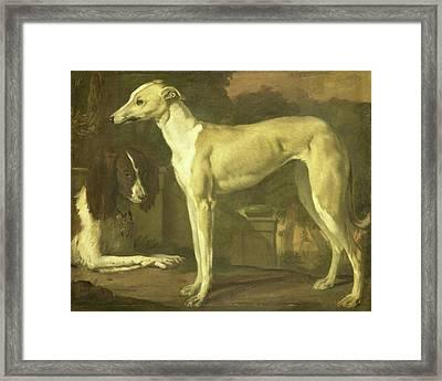 Portrait Of A Greyhound And Spaniel, Jan Weenix Framed Print