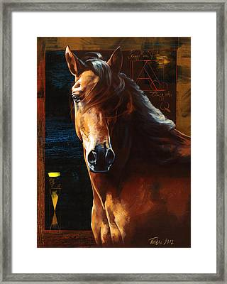 Portrait Of A Horse Framed Print by Dragan Petrovic Pavle
