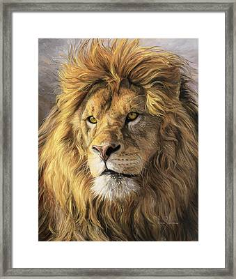 Portrait Of A Lion Framed Print by Lucie Bilodeau