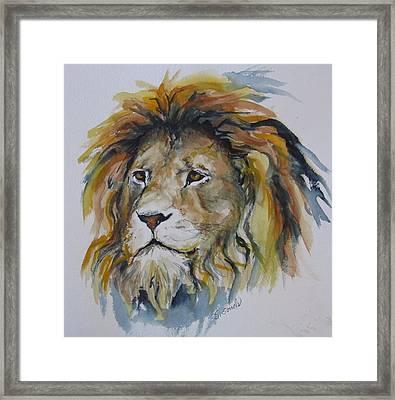 Portrait Of A Lion Framed Print