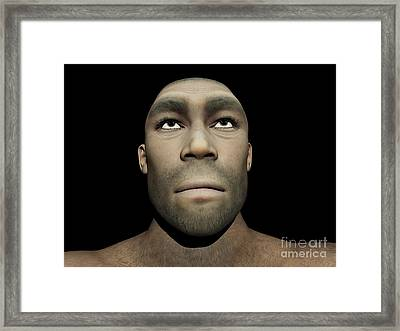Portrait Of A Male Homo Erectus Framed Print by Elena Duvernay