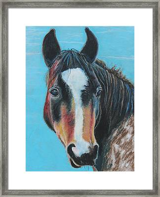 Framed Print featuring the painting Portrait Of A Wild Horse by Jeanne Fischer