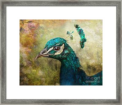 Portrait Of A Peacock Framed Print by Pauline Fowler