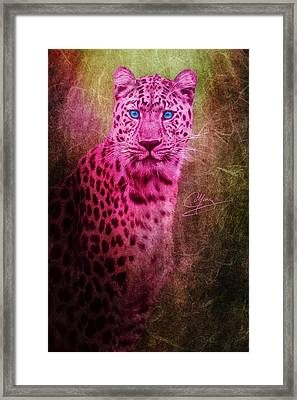 Portrait Of A Pink Leopard Framed Print