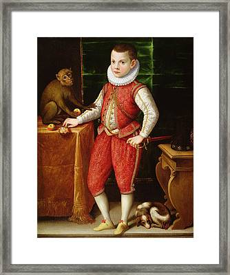 Portrait Of A Young Nobleman Framed Print by Flemish School
