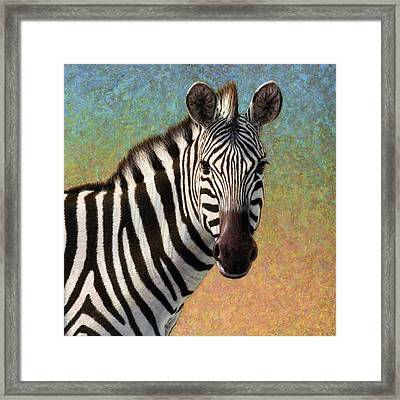 Portrait Of A Zebra - Square Framed Print
