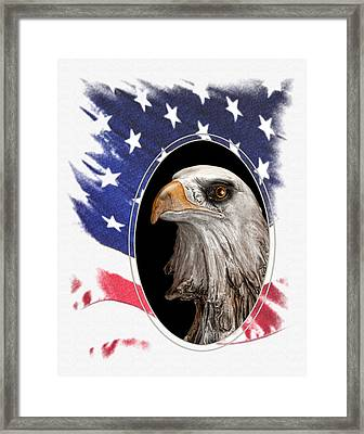 Portrait Of America Framed Print by Tom Mc Nemar
