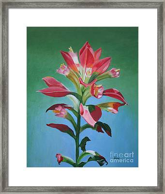 Framed Print featuring the painting Portrait Of An Indian Paintbrush by Jimmie Bartlett