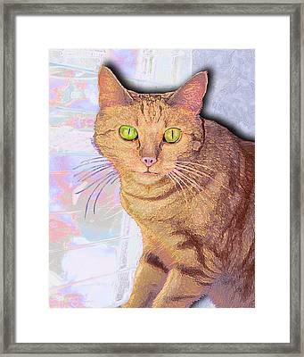 Portrait Of Buster I Framed Print